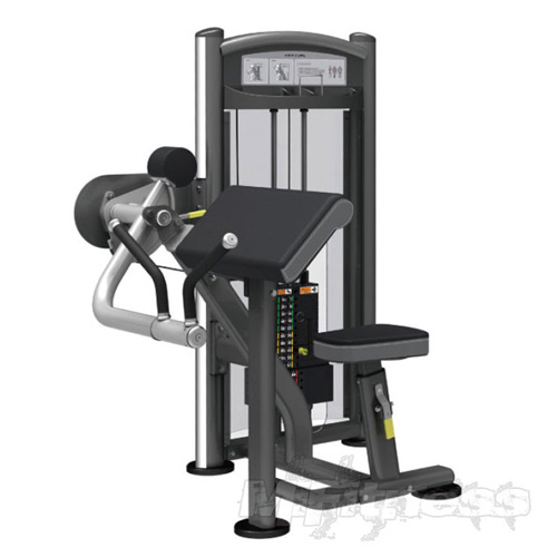 Impulse IT9303 Arm Curl