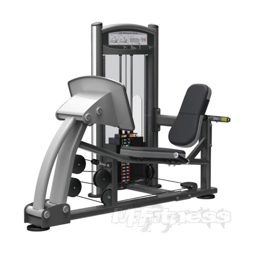 Impulse IT9310 Leg Press