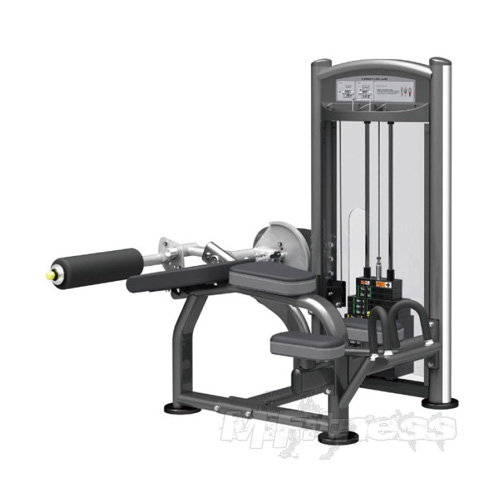 Impulse IT9321 V-Bench Leg Curl