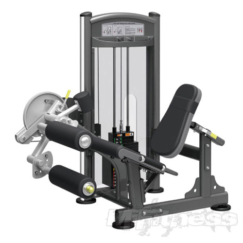 Impulse IT9328 Leg Extension/Leg Curl