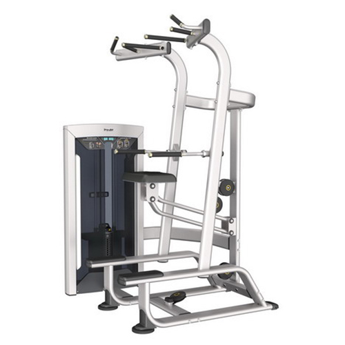 Impulse FE9720 weighted Assisted Chin and Dip Combo