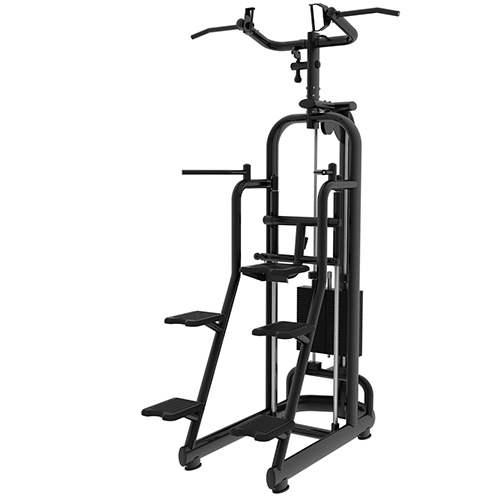PC 650 6019 Assisted Chin up Dip